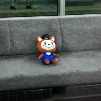 JR新宿駅に停車する相模鉄道の「12000系」の試運転列車の車内に「座る」、相鉄キャラクター「そうにゃん」の人形=JR新宿駅で2019年9月2日午後、梅村直承撮影