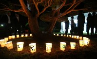 A total of 37 candle lights are placed around a tree to mourn 37 local residents who died in a powerful earthquake that struck Hokkaido, in the prefecture town of Atsuma before dawn on Sept. 6, 2019, the first anniversary of the disaster. (Mainichi/Taichi Kaizuka)