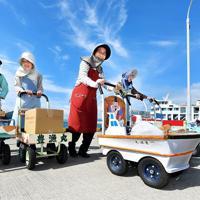持ち主の要望を聞いてデザインされたオンバが島の漁港を彩る=高松市男木町で、山田尚弘撮影