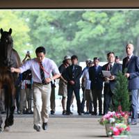 ホースインスペクションで馬の状態を確認する獣医師の天谷友彦さん(奥右から2人目)=東京都世田谷区で、吉田航太撮影