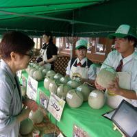 「ホクレンくるるの杜」で、自分たちが栽培したメロンを販売する園芸分会の生徒たち