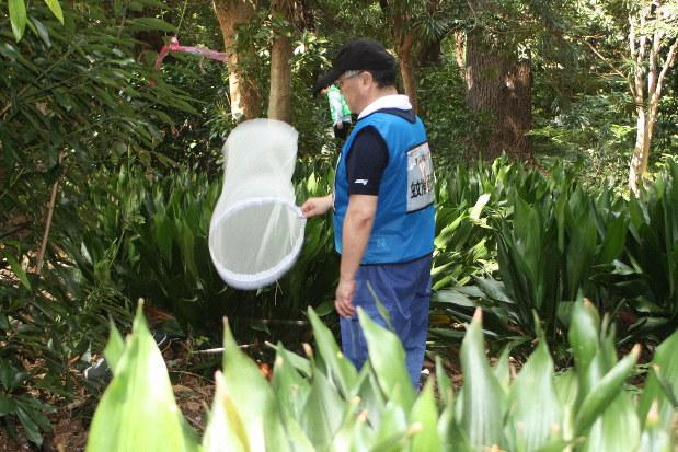 自分に寄ってくる蚊を捕獲して、周辺での蚊の生息数を調べる調査員=東京・新宿御苑で行われたデングウイルス感染蚊の駆除訓練で2019年9月2日、高木昭午撮影