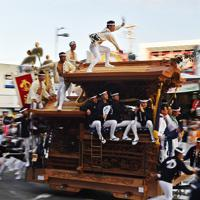 豪快な「やりまわし」を披露するだんじり=大阪府岸和田市で2019年9月14日午前6時24分、猪飼健史撮影