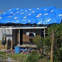 青いビニールシートで覆われた岩科清子さん(73)の自宅。「台風とその後の雨で部屋の中は泥だらけ、土壁もはがれてきた」。現在は友人宅に避難している岩科さんだが、「家に住み続ける事もできず、まだ被災状況の調査も来ていない。これから住む場所をどうすればいいのか」と窮状を訴えた=千葉県館山市布良で2019年9月17日午後1時33分、手塚耕一郎撮影