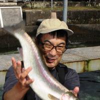 暴れるハコスチ。気性の荒さが釣り客に人気だ=群馬県東吾妻町の県水産試験場箱島養鱒センターで