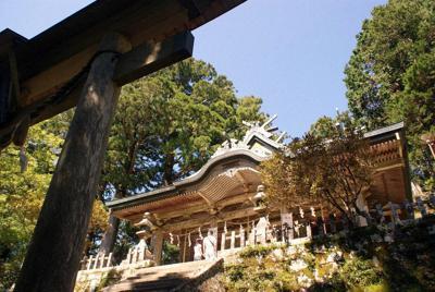 本殿は鳥居越しに熊野三山を見下ろしているのだろう=奈良県十津川村玉置川で