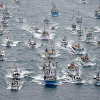 みあれ祭で海上を勇壮に進む漁船団=福岡県宗像市の大島沖で2019年10月1日午前9時48分、本社ヘリから矢頭智剛撮影