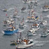 みあれ祭で海上を勇壮に進む漁船団=福岡県宗像市の大島沖で2019年10月1日午前9時42分、本社ヘリから矢頭智剛撮影