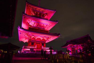 「乳がんキャンペーン」でピンクにライトアップされた清水寺の三重塔(中央)と西門(右)=京都市東山区で2019年10月1日午後6時48分、川平愛撮影