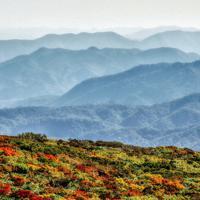 秣岳付近。鮮やかに色づいた山腹の向こうに山形県方面の山並みが澄んだ秋の大気にかすむ=栗駒山で2019年9月27日14時55分、佐藤伸撮影