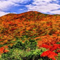 西に延びる主稜線から山頂方面を望む=栗駒山で2019年9月27日11時55分、佐藤伸撮影