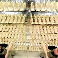 ショールームで過去に製作した木型を手にする木型師の五十石紀子さん=神戸市長田区で、山田尚弘撮影