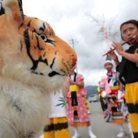 霞露嶽神社例大祭で、みこしと一緒に集落を練り歩く虎舞の団体=岩手県山田町で2019年9月22日、和田大典撮影