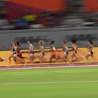 女子5000メートル決勝で力走する選手たち=カタール・ドーハで2019年10月5日、久保玲撮影