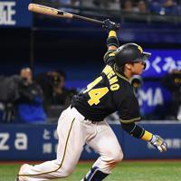 【DeNA-阪神】八回表阪神1死三塁、梅野が中犠飛を放って勝ち越し=横浜スタジアムで2019年10月7日、丸山博撮影