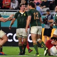 【南アフリカ―カナダ】前半、トライを決めて喜ぶステイン(手前左から3人目)ら南アフリカの選手たち=ノエビアスタジアム神戸で2019年10月8日、猪飼健史撮影