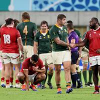 【南アフリカ―カナダ】試合終了後、健闘をたたえあう南アフリカとカナダの選手たち=ノエビアスタジアム神戸で2019年10月8日、幾島健太郎撮影