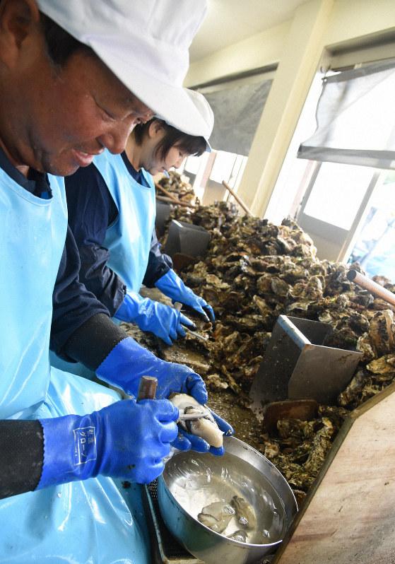 量 ランキング の 収穫 牡蠣
