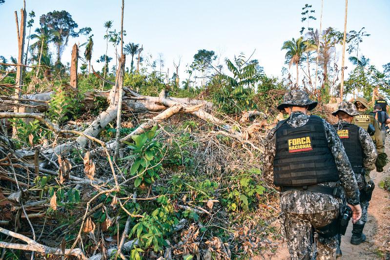 違法伐採された木が散乱するシクリンの先住民保護区=9月11日、ブラジル北部で (山本太一撮影)