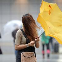 台風19号の影響による強風で傘を飛ばされる女性=東京都新宿区で2019年10月12日午前10時59分、宮武祐希撮影
