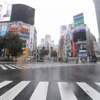 台風19号の接近で、閑散とする渋谷の街=東京都渋谷区で2019年10月12日午前8時56分、宮武祐希撮影