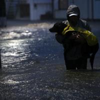 犬を抱えて、冠水した道路を歩いて避難する男性=川崎市高津区で2019年10月12日午後5時7分、小川昌宏撮影