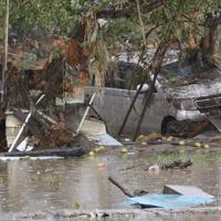 千曲川の堤防が決壊して濁流が流れ込んだ長野市穂保のリンゴ畑=長野市で2019年10月14日午後2時53分、丸山博撮影