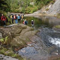 ガイドの小野信也さんの遺体は三角滝の滝つぼ(右下)に近い川底で見つかった=秋田県北秋田市で