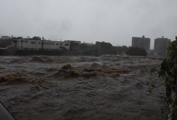 市 被害 伊東 台風