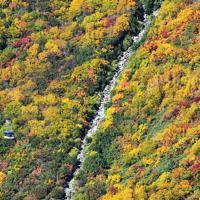 紅葉の見ごろを迎えた立山黒部アルペンルートの黒部平周辺=富山県立山町で2019年10月9日、本社ヘリから木葉健二撮影
