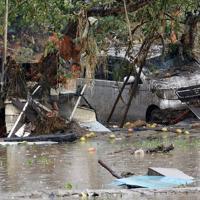 千曲川の堤防が決壊して濁流が流れ込んだリンゴ畑=長野市穂保で2019年10月14日午後2時53分、丸山博撮影