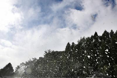 パイプを通して勢いよく飛ぶ人工雪=神戸市灘区で2019年10月17日午前10時13分、梅田麻衣子撮影