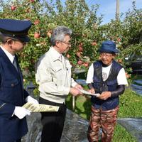 リンゴ盗難防止のチラシを配る桜田宏市長(中央)=青森県弘前市のリンゴ園で