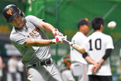 打撃練習する巨人の坂本勇=ヤフオクドームで2019年10月18日、徳野仁子撮影