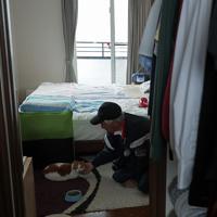 台風19号の影響で吉田川が氾濫し、浸水した米農家の八木秀敏さん(69)宅では1週間たった今も水が完全には引いていない。船で自宅に渡り、浸水を免れた2階で、家を離れたがらない飼い猫のチャメにえさを与えた=宮城県大崎市で2019年10月19日午後1時22分、和田大典撮影