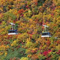紅葉の見ごろを迎えた立山黒部アルペンルートの黒部平周辺=富山県立山町で2019年10月、本社ヘリから木葉健二撮影