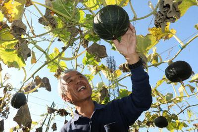 「甲州天空かぼちゃ」を生産する広瀬隆さん。大きく実ったカボチャを前に笑顔を見せた=山梨県笛吹市で