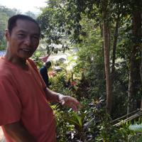 自宅横のサトウヤシの前で、バロができる手順を説明するペトラス・トマヨムさん=インドネシア中部スラウェシ島の北トラジャ県で2019年9月20日、武内彩撮影