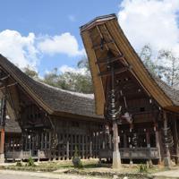 舟形の屋根と柱に飾られた水牛の角が特徴的なトラジャの伝統的家屋=インドネシア中部スラウェシ島の北トラジャ県で2019年9月21日、武内彩撮影
