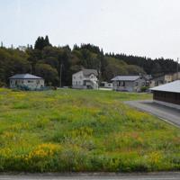 高齢者住宅(右端)の近接地に広がる売却された元町有地=山形県小国町あけぼの3で21日