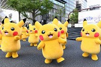 A pack of Pikachus appear in the