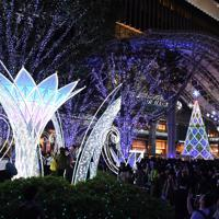 JR博多駅前広場で始まった四季折々の自然美を表現したイルミネーション=福岡市博多区で2019年11月6日、上入来尚撮影