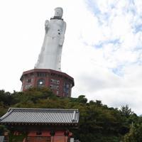 2006年に閉鎖された世界平和大観音像。十重の塔(右)には兵庫県淡路市が安全対策のネットを掛けた=同市釜口で2019年9月29日午後0時57分、目野創撮影