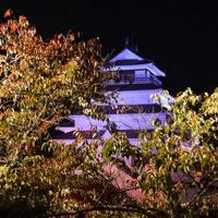 ライトに照らし出された鶴ケ城の木々=福島県会津若松市で