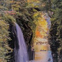 例年、渓谷から紅葉を見上げる貸しボートも好評=高千穂町観光協会提供