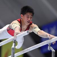 体操男子個人総合で平行棒の演技をする優勝した橋本大輝=高崎アリーナで2019年11月8日、宮間俊樹撮影