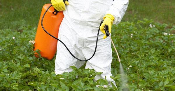 ホームセンターでも買える「除草剤」本当に危険なの? | 食の情報ウソ・ホント | 小島正美 | 毎日新聞「経済プレミア」
