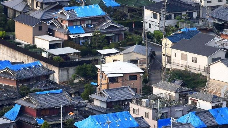 地震で被災し、屋根にブルーシートがかけられた家屋=大阪府高槻市で2018年6月21日午後6時6分、本社ヘリから平川義之撮影