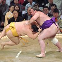 はたき込みで遠藤(左)を破る栃ノ心=福岡国際センターで2019年11月12日、津村豊和撮影