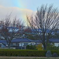 浸水被害を受けた住宅街に現れた虹=福島県本宮市本宮で2019年11月12日午前6時56分、渡部直樹撮影
